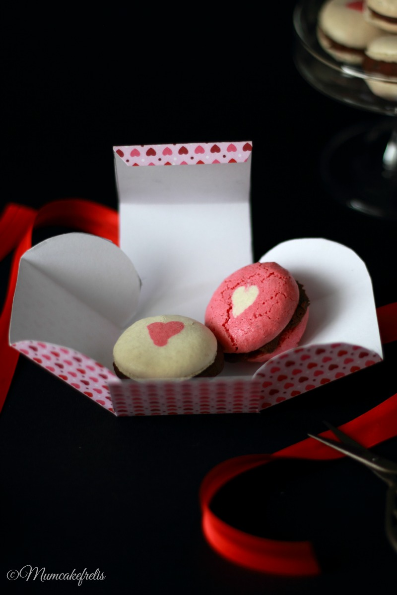 macarons ispirati dal blog blog La Raffinerie Culinaire