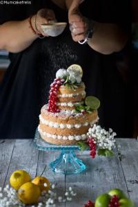 torta all'Hugo