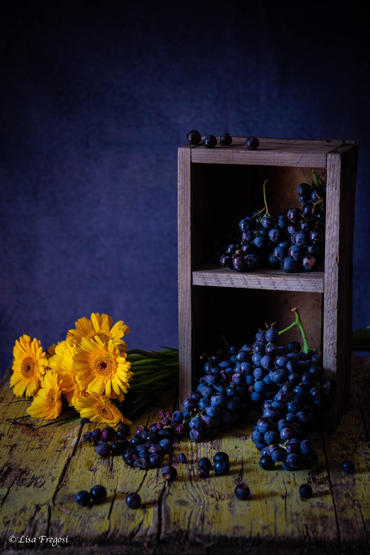 schiacciata ciaccia Toscana con uva canaiola