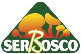 SerBosco
