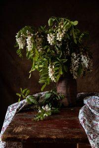 fiori di acacia foto