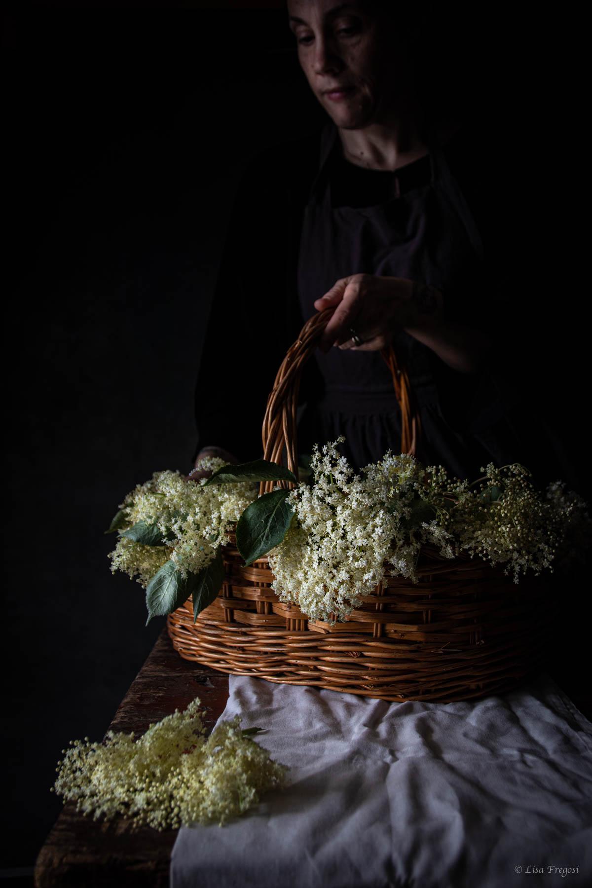 fiori di sambuco foto