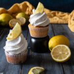 cupcake frosting da utilizzare