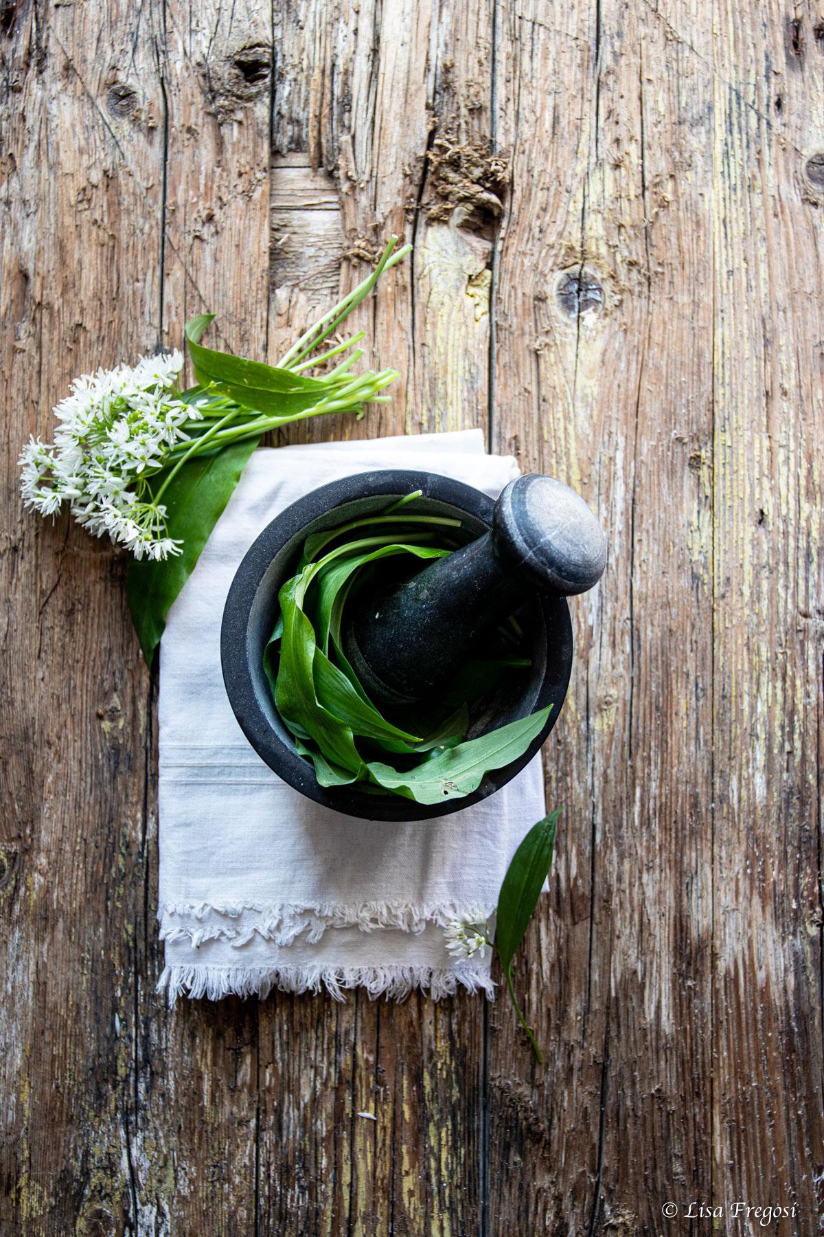 aglio orsino proproetà, uso in cucina e dove trovarlo